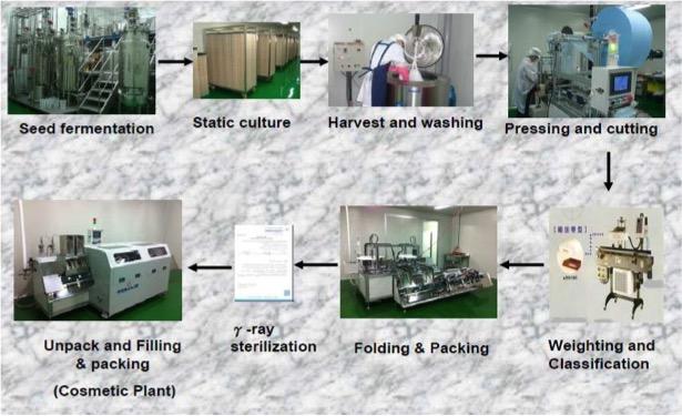 Visoanska Biocellulose Mask Processes