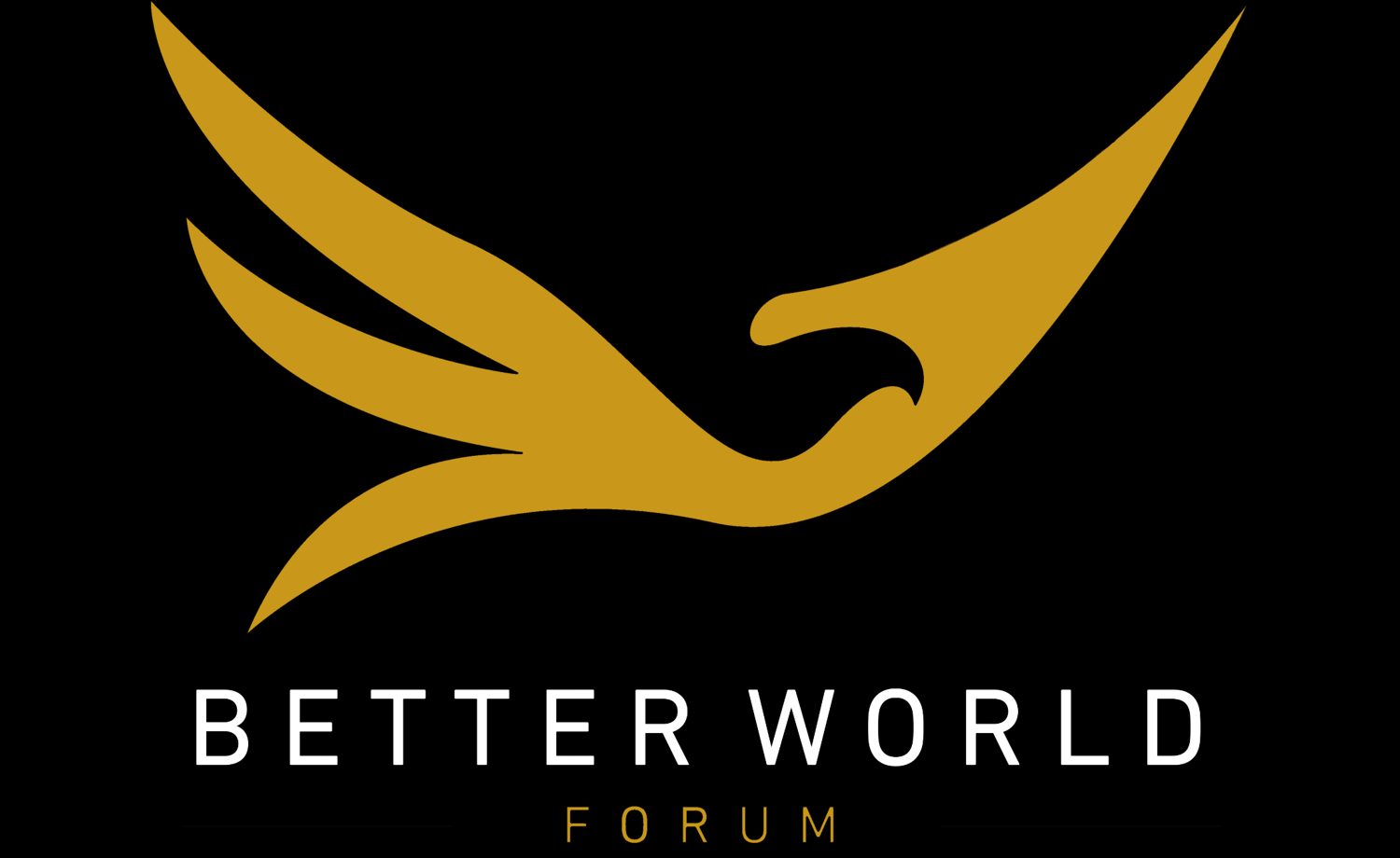 Better world forum and Visoansla